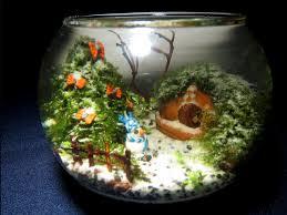 Aquascape Tank Fishes U0026 Aquariums Fish Tank Setups Beautiful Planted Aquascape