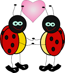 ladybug love 4 art coloring book colouring sheet page
