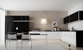 awesome black white colors small kitchen features white kitchen