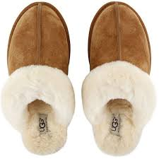 ugg bedroom slippers sale best 25 ugg slippers ideas on slippers cheap ugg