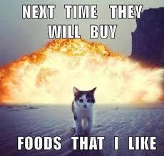 Revenge Memes - 15 times cats got revenge memes cutesypooh