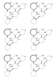 maths percentage bubbles worksheet by madalien teaching