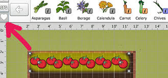 Companion Gardening Layout Companion Planting Made Easy