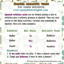 43 best verbos reflexivos images on pinterest daily routines