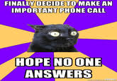 Anxiety Cat Meme - image 221915 anxiety cat know your meme