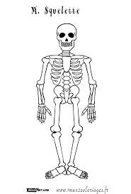 coloriage dessin halloween coloriage tete de mort l dessincoloriage