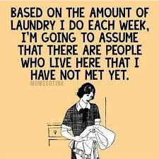 Folding Laundry Meme - might as well make it cute laundry right momlife truth funny