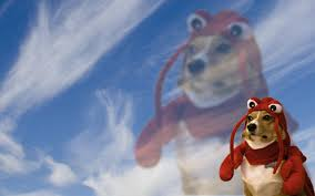 lobster dog wallpaper you u0027re welcome pics