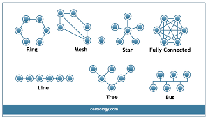 logical layout of network network topology star bus ring topology tree hybrid and mesh
