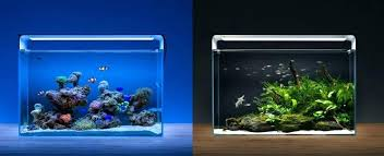led reef lighting reviews aquarium lighting reviews led reef aquarium lighting reviews