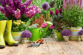 gardening tools and flowers on the terrace in the garden stock