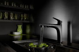 new kitchen sink styles painted grey cabinets delta faucets oil rubbed bronze ikea sinks