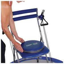 Chair Gym Com Chair Gym Twister Seat Stoneberry