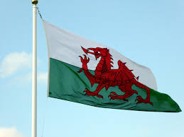 New South Wales Flag We Need To Celebrate The Uniqueness Of The Welsh Education System U0027