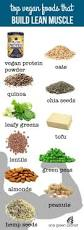best 25 lean foods ideas on pinterest lean body diet high