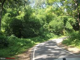 rambling inside the forests of jharkhand team bhp