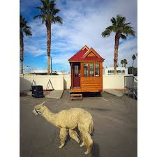 alpacapalosa meet triton tiny house community in downtown las