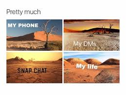 my phone be dry af qoutes pinterest funny memes memes and humor