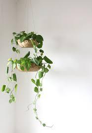 diy hanging planter u2013 alana jones mann