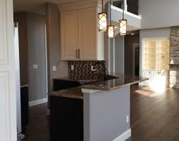built in cabinet for kitchen bar built in bar wonderful home bar area a clean and organized