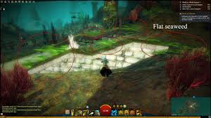 Guild Wars 2 Forum Bugs Game Forum Website List Of Small