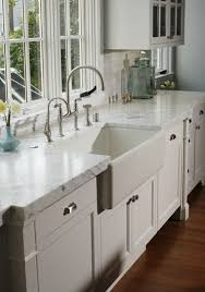 Raised Panel Cabinet With Nuance by 151 Best Gourmet Kitchen Renovation Images On Pinterest Kitchen