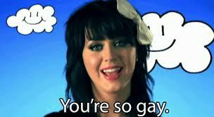 Senor Chang Gay Meme - is using gay as an insult ok
