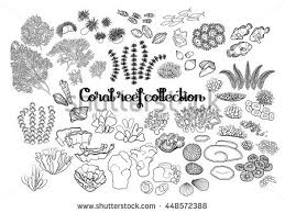 coral reef collection drawn in line art style sea and ocean