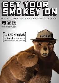 Smokey The Bear Meme - ingenious pursuits 2015
