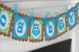 baby boy owl baby shower decorations owl home decor