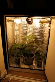 building a grow cabinet addition grow closets the foundation building grow closets