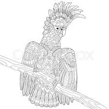 zentangle stylized cartoon cockatoo parrot and wooden tree branch