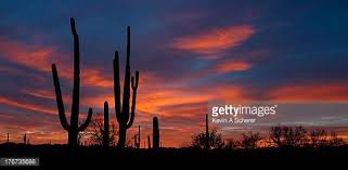 Park West Landscape by Saguaro National Monument Stock Photos And Pictures Getty Images