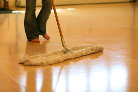 Dog Urine On Laminate Flooring How To Clean It Cleaning Products
