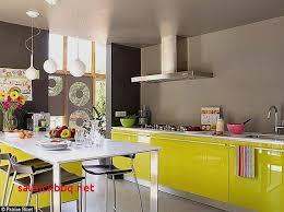 meuble cuisine taupe peinture couleur taupe pour cuisine pour idees de deco de cuisine