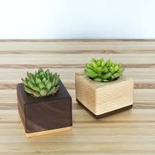 Succulent Planter Planters Cool Succulent Planter Rectangular Ceramic Pot
