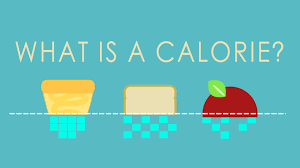 what is a calorie bryce