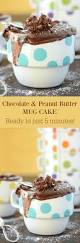 best mug chocolate peanut butter mug cake u2013 the novice chef
