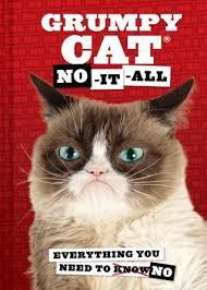 the world s grumpiest cat grumpy cat