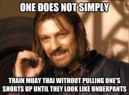 Muay Thai Memes - the weekend is almost here so come and awa kings muay thai