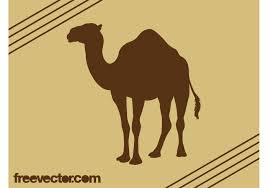 camel silhouette vector download free vector art stock graphics