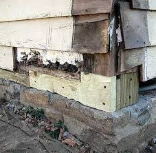 Repair Floor Joist Replacing Rotten Floor Joists Google Search My Old House
