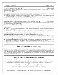 It Executive Resume Samples by Chief Executive Cover Letter