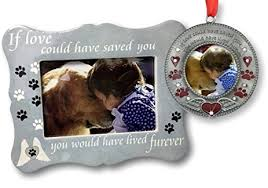 pet memorial gifts pet memorial gifts if could saved you