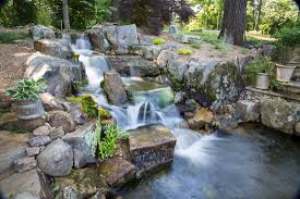 backyard pond projects tn knoxville maryville blount knox county