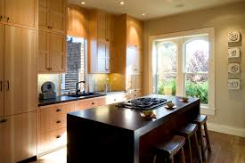 asian style kitchen cabinets kitchen asian contemporary kitchen cabinets 2 of 10 photos