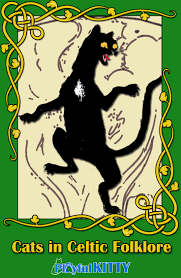 cats in celtic folklore the cait sidhe playful kitty