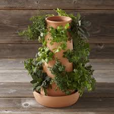 103 best garden love this pot polanter container images on