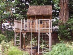 Simple Backyard Tree Houses by Tree House Building Plans Of Tree Houses And Play Houses From