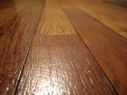 amazing of best wood flooring for dogs with the best hardwood